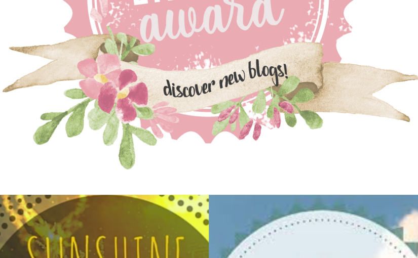 MEGA AWARD POST: Sunshine, Leibster and The Awesome Blogger Award!